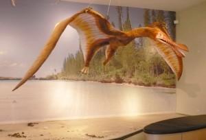 Imposante Kreaturen: Nachbildungen von Flugsauriern sind im Naturkundemuseum zu bewundern. Foto: Jan Hendrik Neumann