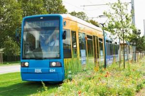 Bei zahlreichen Probefahrten testete die KVG die neue Schienentrasse, die über weite Flächen über Rasengleise führt. Entlang der B7/B83 blüht eine Sommerblumenwiese. Foto: KVG AG/Weidemann