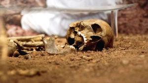 Die Spur der Skelette