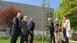 Baumspende für die neue GRIMMWELT in Kassel