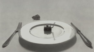 Flavio Apel: Imperfekte Perzeption