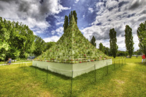 "Agnes Denes schuf die ""Living Pyramid"". Foto: Uwe Thon"