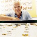 In Sorge um die Welt der Schmetterlinge und ihrer Verwandten: Dr. Kai Füldner, Direktor des Naturkundemuseums im Ottoneum. Foto: Mario Zgoll